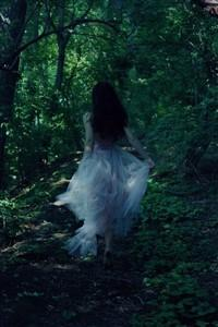 Dream Weaver ~ The LightBringer