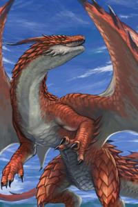 Draconic Anger