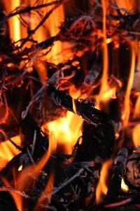 Bonfire of Souls