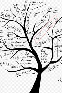 The Math Genius Ramu