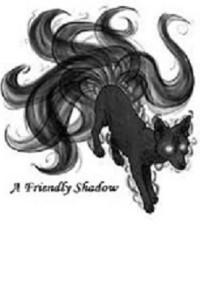 A Friendly Shadow