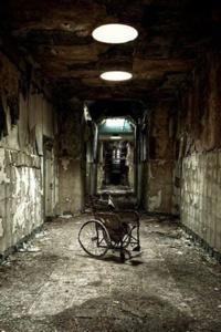 The Black Asylum