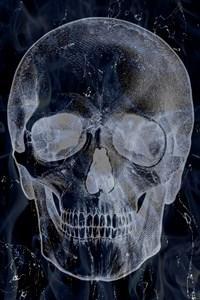 Follower Of Death